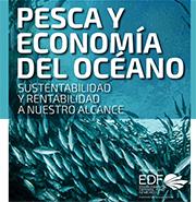 Pesca y Economía del Océano